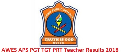 AWES APS Teacher Results